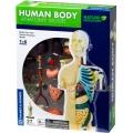 Kosmos Конструирай модел на човешкото тяло 260830