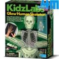 4M Детска лаборатория Светещ скелет, отливки и магнити 03375