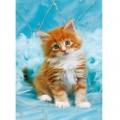 Clementoni Детски пъзел Малко котенце 500 части