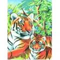 KSG - Рисуване по номера с моливи - Тигри