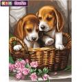 KSG - Рисуване по номера  - Кученца в кошница