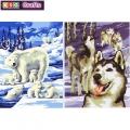 KSG - Рисуване по номера - Двойни картини